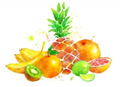 Sticker Stilleben mit Früchten.