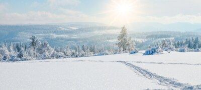 Sticker  Stunning panorama of snowy landscape in winter in Black Forest - winter wonderland