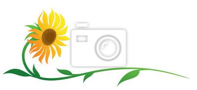 The symbol of yellow field sunflower.