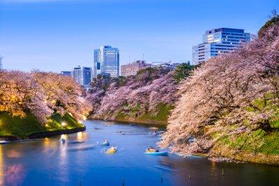 Sticker Tokyo Imperial Moat im Frühjahr