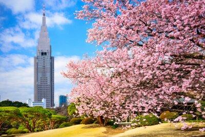 Sticker Tokyo, Japan am Shinjuku Gyoen Park im Frühling
