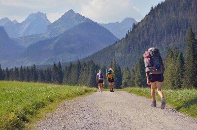 Tourist auf der Reise unter schönen Bergen in der Slowakei