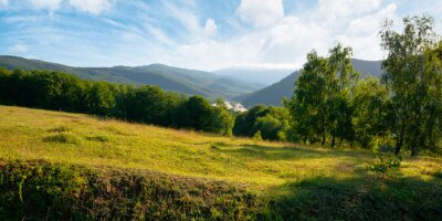 trees on the meadow in mountains. beautiful morning scenery. clouds on the sky. ridge in the distance. sunny weather