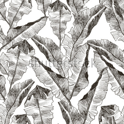 Sticker Tropic plants floral seamless jungle pattern. Print vector background of fashion summer wallpaper palm banana leaves in black and white gray style