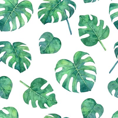 Sticker Tropical  seamless pattern with monstera leaves. Hand painted in watercolor.