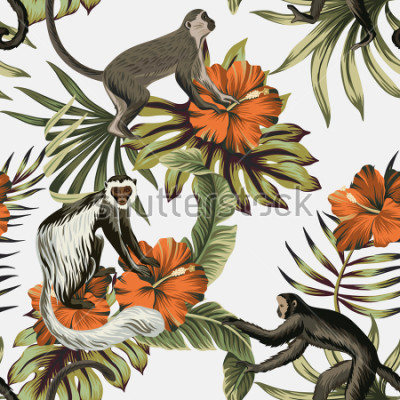 Sticker Tropical vintage monkey, red hibiscus flower, palm leaves floral seamless pattern white background. Exotic jungle wallpaper.