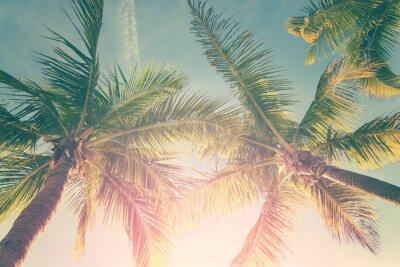 Sticker Tropische Landschaft mit Palmen und sonnigen Himmel