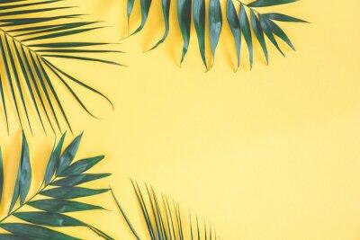 Sticker Tropische Palmblätter auf gelbem Hintergrund. Sommer-Konzept. Flachlage, Draufsicht, Kopienraum