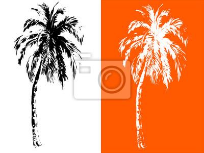 Tropische Palmen, schwarze Silhouetten auf weißem Hintergrund. Weiße Silhouetten auf orange Hintergrund. Vektor, von Hand gezeichnet