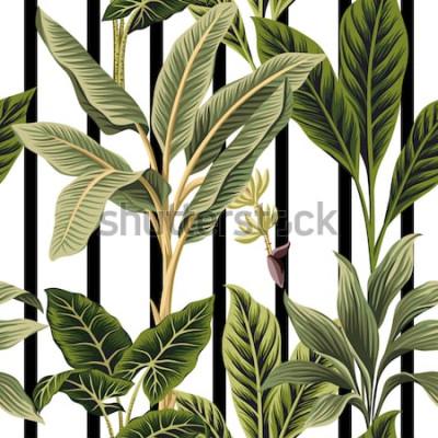Sticker Tropische Weinlesepalmen, nahtloser Musterschwarzweiss-Streifenmit blumenhintergrund der Bananenbaum. Exotische botanische Dschungeltapete.