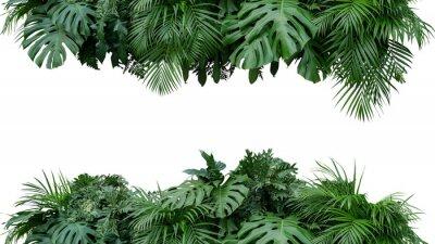 Sticker Tropischer Blattlaubbetriebs-Buschblumenanordnungs-Naturhintergrund lokalisiert auf weißem Hintergrund, Beschneidungspfad eingeschlossen.