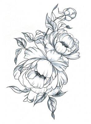 Sticker Übergeben Sie gezogene Linie Kunsttinte und Aquarellpfingstrosen in der grafischen Art. Weibliche Tätowierungsskizze, blühendes Blumenblumen-, Schwarzweiss-Illustration des Frühlinges.