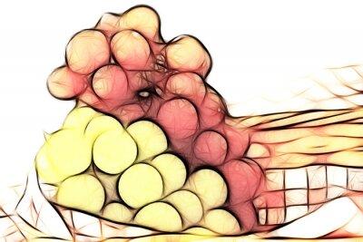 Sticker uvas