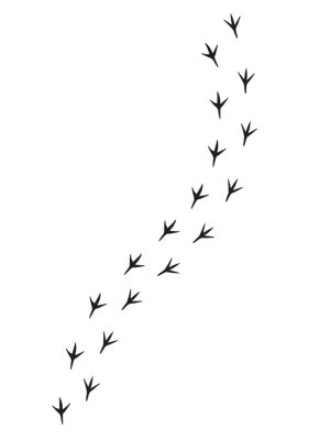 Sticker Vector black bird paw steps road isolated on white background