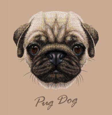 Sticker Vector illustrative Porträt von Mops Hund.