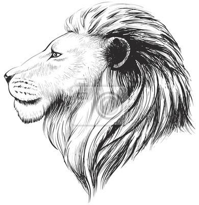 Sticker Vector Lions Kopf, Abbildung. Löwenhand gezeichnetes Profil.