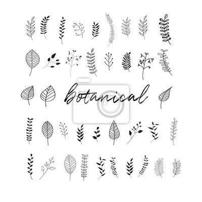 Sticker Vektor botanische Kritzeleien Illustrationselemente.  handgezeichnete Zeichnungsskizze.  Blätter Blatt Gras Eberesche