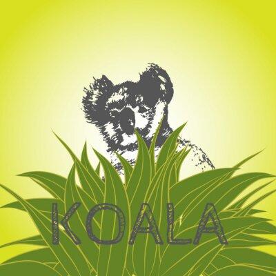 Sticker Vektor-Illustration eines Koala-Bären in Eukalyptus-Blätter. Koala. Eukalyptusbaum.
