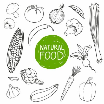 Sticker Vektor-Illustration von Hand gezeichnet Gemüse