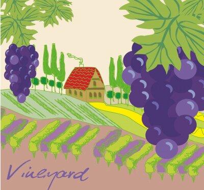 Sticker Vektor-Illustration von Weinberg