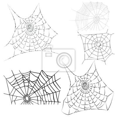 Vektor Spinnweben