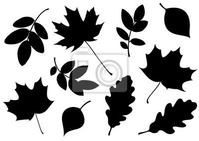 Sticker Vektorsatz der dekorativen Herbstblattschattenbilder.
