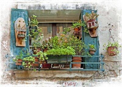 Sticker Venedig, alte kleine Fenster mit Pflanzen
