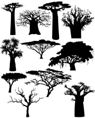 verschiedenen afrikanischen Bäume und Büsche - Vektor
