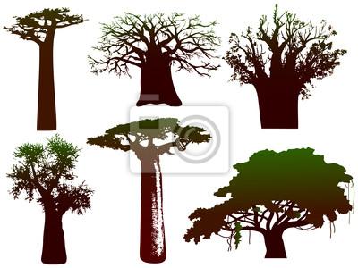 verschiedenen Bäumen von Afrika - Vektor