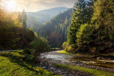 Sticker Wald Fluss in den Bergen