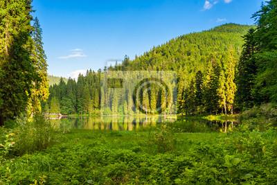 Wald Reflexion auf dem See auf dem Hintergrund der Berge