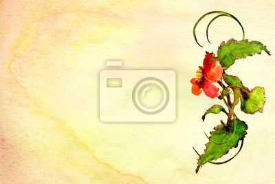 watercolor background textured ombre wash with red flower