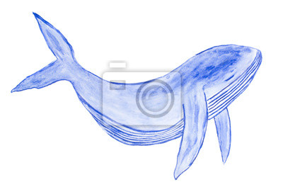 Watercolor cute blue whale art illustration isolated on white background (hand painted)
