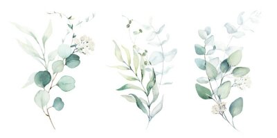 Sticker Watercolor floral illustration set - green leaf branches collection, for wedding stationary, greetings, wallpapers, fashion, background. Eucalyptus, olive, green leaves, etc.