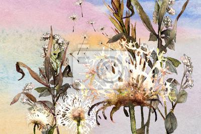 watercolor meadow dandelions
