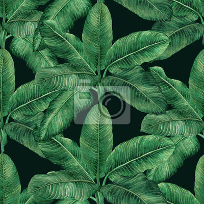 Watercolor painting coconut,banana,palm leaf,green leave seamless pattern background.Watercolor hand drawn illustration tropical exotic leaf .prints for wallpaper,textile Hawaii aloha jungle style.