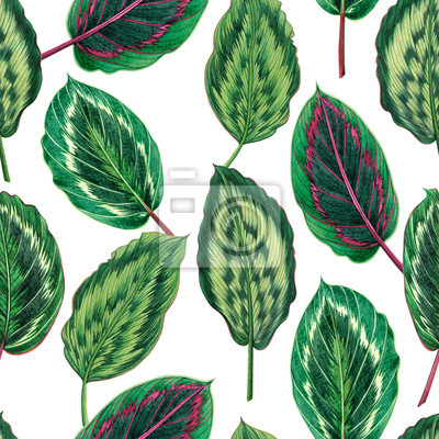 Watercolor painting colorful tropical palm leaf,green leaves seamless pattern background.Watercolor hand drawn illustration tropical exotic leaf prints for wallpaper,textile Hawaii aloha jungle style.