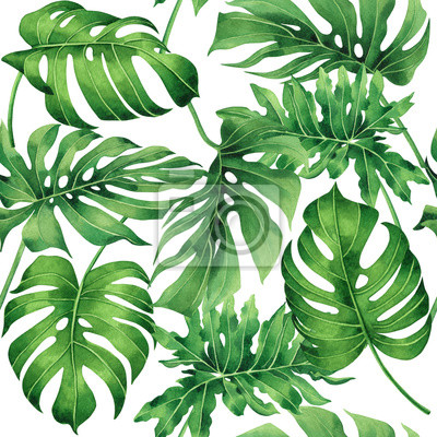 Watercolor painting tropical monstera,palm leaf,green leave seamless pattern background.Watercolor hand drawn illustration tropical exotic leaf prints for wallpaper,textile Hawaii aloha jungle style..