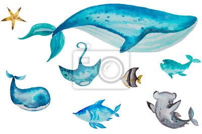 Watercolor set of illustrations with marine starfish, dolphin, fish, whales. Watercolor illustration isolated on white background. Handpainted nautical collection.