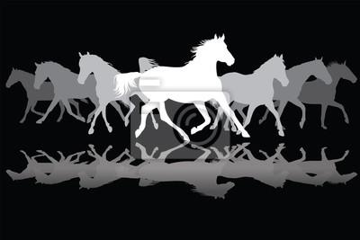 Weiß Trotting Pferde Silhouette auf schwarzem Hintergrund