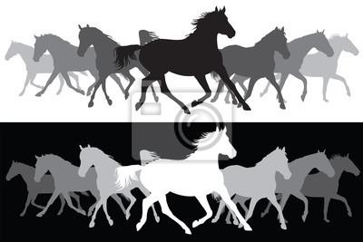 Weiß und schwarz Trotting Pferde Silhouette Hintergrund