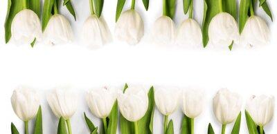 Sticker Weiße Tulpen mit Schatten