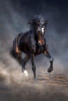 Wildes Pferd im dunklen Wüstenstaub