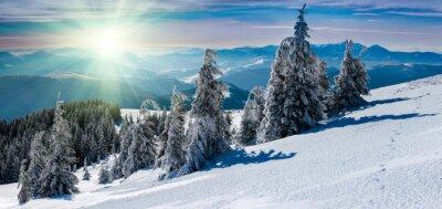 Sticker Winter-Panorama-Landschaft in den Bergen. Schneebedeckte Bäume und Berggipfel in der Ferne.