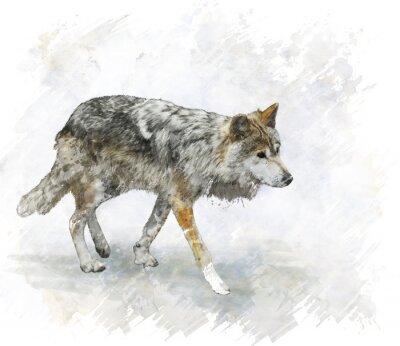 Sticker Wolf-Aquarell