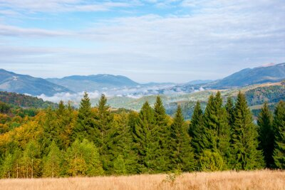 wonderful autumn landscape in evening light. open view with forest on the meadow in front of a distant valley. trees and dry grass on the hills. mountain ridge in the distance. blue sky with clouds