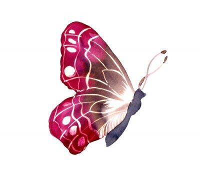 Sticker 바틱 염색 기법 으로 그려진 나비
