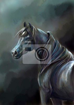 Арабская вороная лошадь