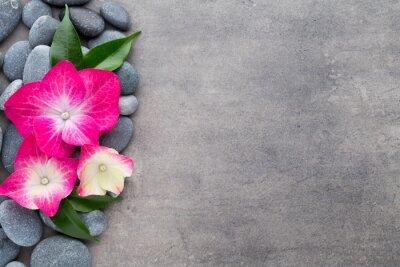 Sticker Spa Steine und Blumen, auf grauem Hintergrund.