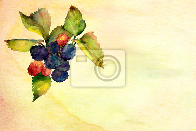 yellow watercolor ombre wash background texture with berries
